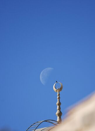 The crow, the moon and the minaret photo