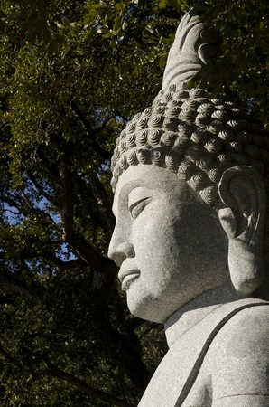 Face of Buddha photo