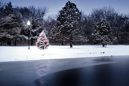 Deze foto illustratie van een sneeuw bedekt kerstboom die opvalt fel tegen de donkere tinten van dit bevroren meer lijkt bijna magisch als het verlicht deze scène Stockfoto