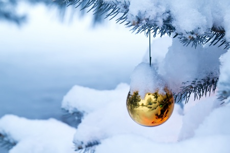 This bright gold ornament hanging from a snow covered Christmas Tree Branch reflects its outdoor snowy surroundings