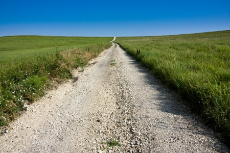 This limestone packed country road running through the middle of the Midwestern Kansas Tall Grass Prairie takes a small bend through this pasture land for whatever unknown reason  photo