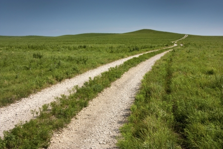 A long winding rural road in the Kansas Tallgrass Prairie National Preserve shows the depth and space of the green pasture and tall grassland available in this preserve  Фото со стока
