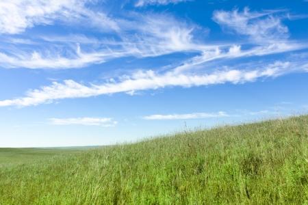 Este paisaje de pastos serena y hermosa de la pradera de hierbas altas del medio oeste, con las colinas ondulantes, árbol solitario, olas de viento y hierba, cielo azul profundo y ricos colores verde hace una vista maravillosa Foto de archivo - 22149399