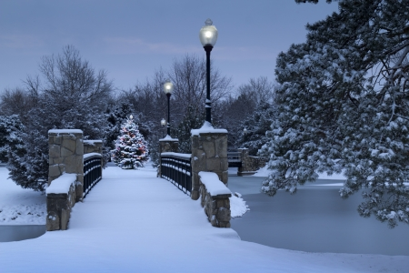 christmas morning: A beautiful scene of a brightly lit Christmas Tree glowing in the early morning light of this snowy park during the holiday season  The snow covered bridge, street lamps, and frozen lake make for a beautiful and classic Holiday illustration