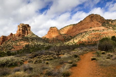 Hiking trails in Sedona Arizona leads to many amazing red rock formations and desert cactus   photo