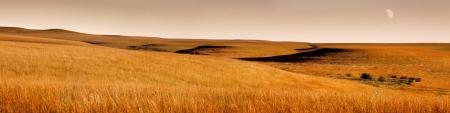 Deze serene panoramisch landschap bij zonsopgang van de Kansas Tallgrass Prairie Preserve met glooiende heuvels, golven van het blazen gras, rijke gouden kleuren en vervaagde maan zorgt voor een prachtige pastorale scène Stockfoto