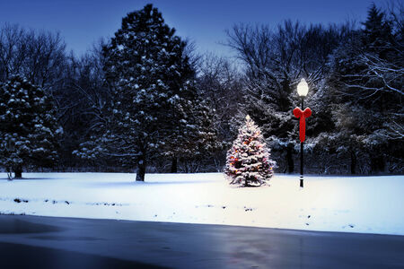 outdoor lighting: This magically lit Christmas Tree glows brightly on a snow covered Christmas morning in this rural Holiday Scene