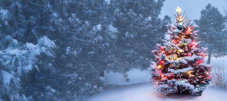 Esta neve outdoor coberto decorado Árvore de Natal brilha intensamente nesta manhã de Natal nevoenta