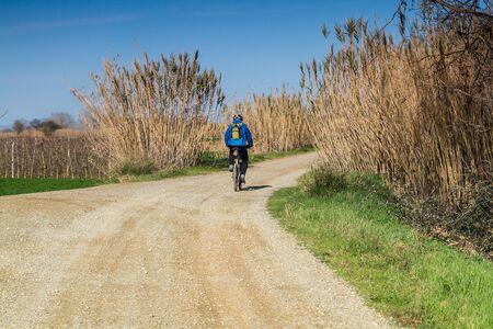 Cyclist, seen from behind, riding on a rustic road