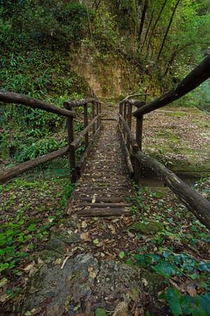 fluent: wooden bridge