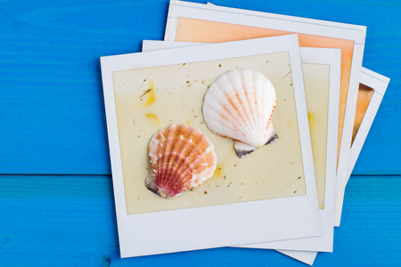 photos of pattern: Polaroid Frame and Seashell on Blue Wooden Background with Copy Space Stock Photo