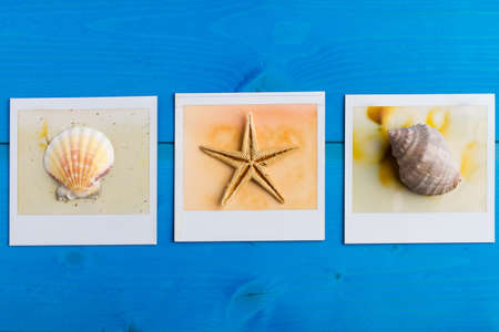 snapshots: Snapshots of shells