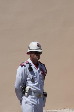 reale: Guardia al palazzo reale,Montecarlo Editorial