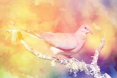 Pigeon on branch Çizim