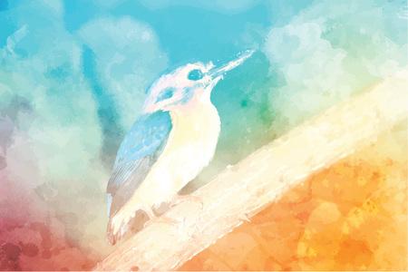Eastern bluebird Illusztráció