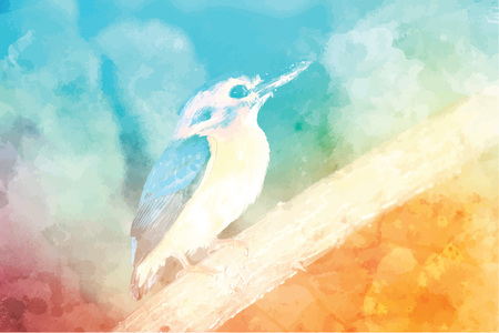 Eastern bluebird Illustration