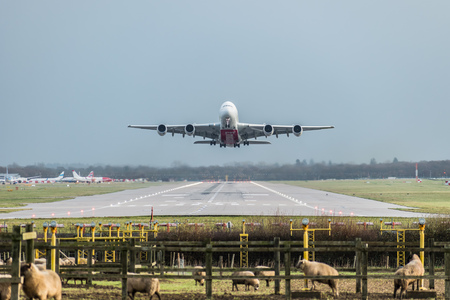 GATWICK AIRPORT, ENGLAND, UK – DECEMBER 09 2018: View directly down the runway as an Emirates Airline plane takes off from London Gatwick Airport heading for Dubai. Sheep and copy space included.