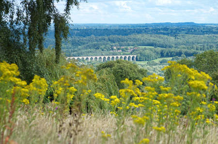View of Cefn Mawr Viaduct which carries the Chester and Shrewsbury railway over the River Dee between Newbridge and Cefn-Bychan. The arches in the distance have soft focus wild flowers in foreground.