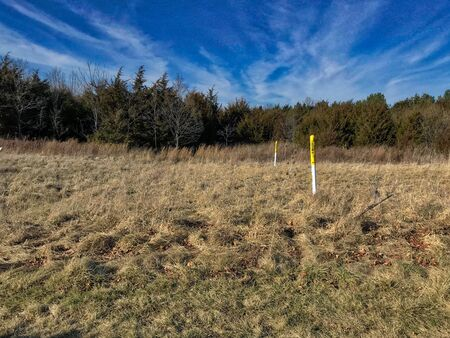 Dead winter grass with blue sky and gas marker Stock Photo - 96531594