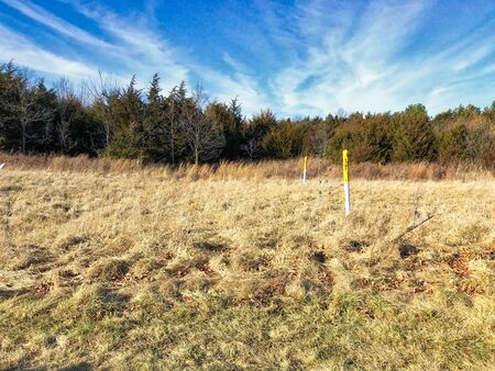 Dead winter grass with blue sky and gas marker