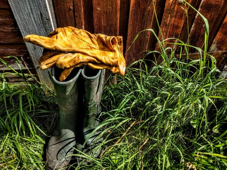 Wellington boots with a selection of gardening equipment against a shed. Фото со стока