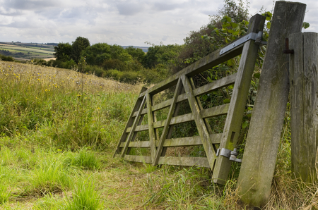 wildflowers: Broken field gate next to the old fence post overlooking a meadow with wildflowers near Brubberdale