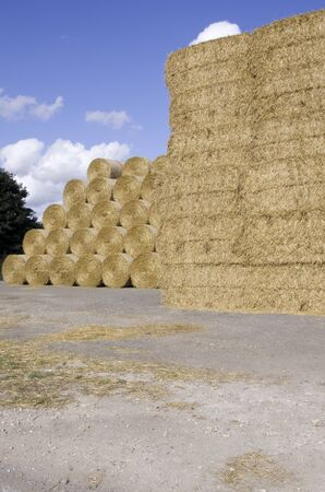 color photographs: Straw stack with both round and square bales of straw