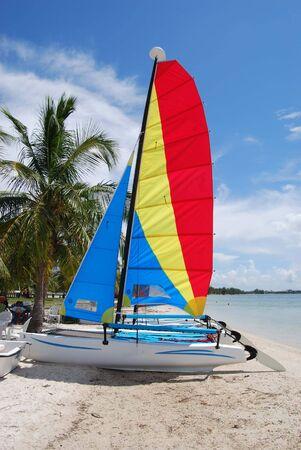 key biscane: Catamaranes de vela peque�a en una playa de la Bah�a de Biscayne, cerca de Key Biscayne, Florida Foto de archivo