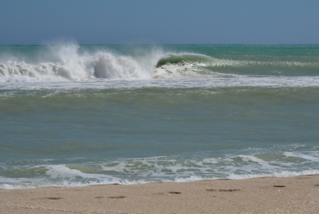 Turbulent waves and surf on an incoming tide at a southeast florida beach