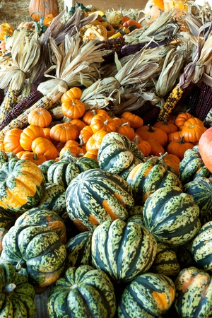shucked: Fall vegetables at a farm market produce stand Stock Photo
