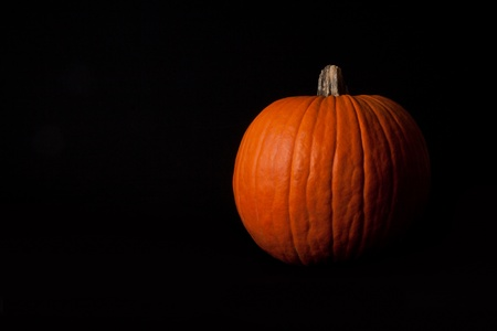 sidelit: Pumpkin side-lit on horizontal black background.
