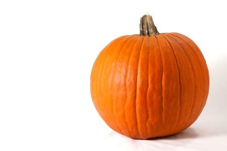 sidelit: Pumpkin side-lit on horizontal white background. Stock Photo