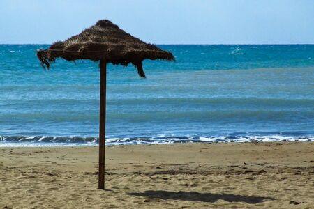 on a beach, background the sea.