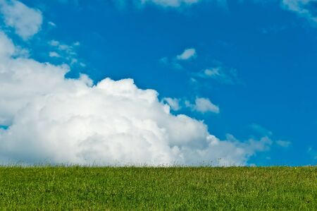 blue cloudy sky. in the foreground a meadow