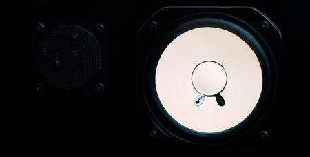 A speaker. The loudspeaker is black wood. The membrane is white