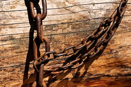 A chain is wrapped around a tree trunk Banco de Imagens
