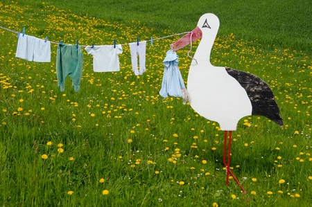 A stork of wood on a meadow. At the beak, is a clothesline. Baby garment is on the clothesline