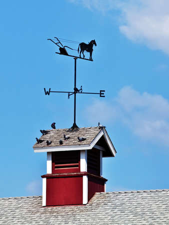Weather vane on top of cupola of a barn Archivio Fotografico