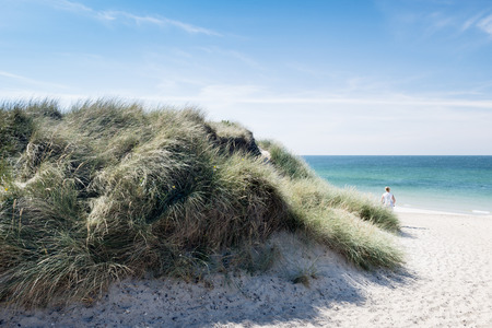 foreground: Dune with beach grass in the foreground.