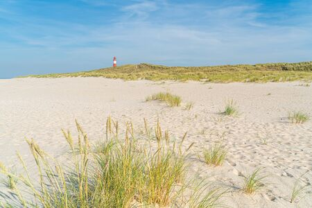Dune with beach grass in the foreground. White red lighthouse on background. Stock fotó