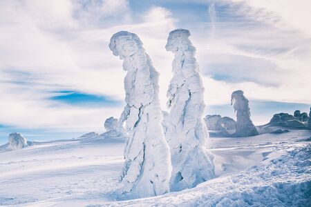 Strange frozen trees as figures in Sudety mountain in Poland on winter. Banco de Imagens