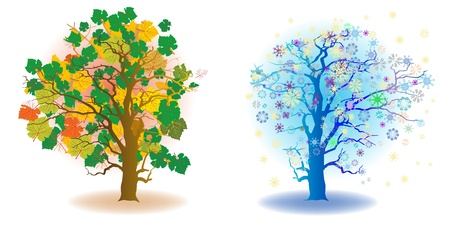 autum: two seasons trees, autum and winter, artistic icons