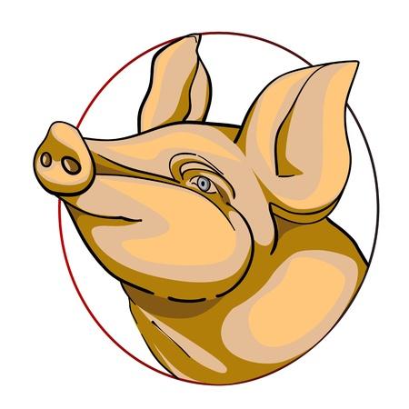 wildschwein: Schweinekopf, chinesische Sternzeichen isoliert auf wei�