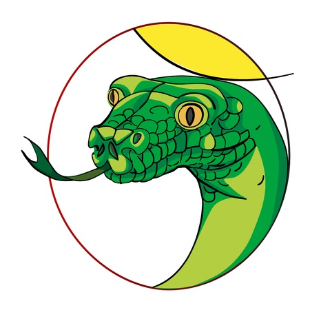 snake head, chinese zodiac sign isolated on white Vector