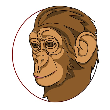 monkey head in a circle, chinese zodiac sign isolated on white Vector