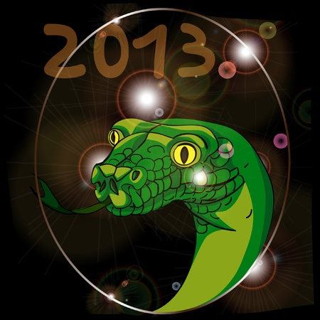 year of the snake 2013 Vector