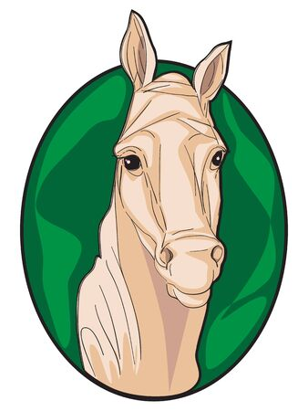 Hand drawn clipart illustration of a horse icon isolated on white Stock Vector - 16556658