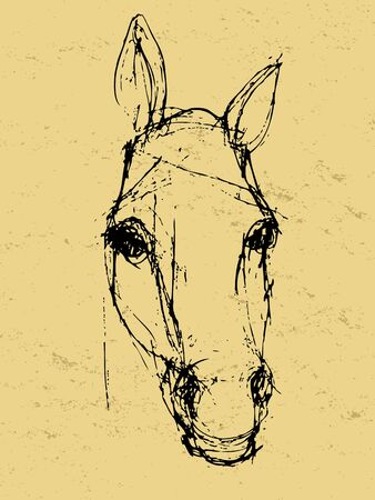 sketch: Graphic hand drawn artwork on a grunge paper, sketch of a horse