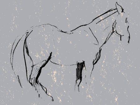 cave painting: Grunge mano dibujado ilustración de un bosquejo caballo carbón, la piedra