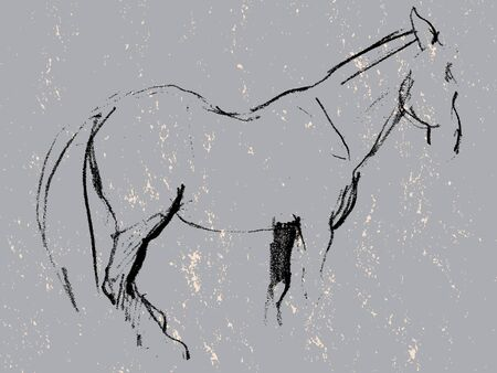 pure breed: Hand drawn grunge illustration of a horse, charcoal sketch on stone